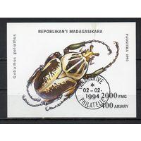 Жуки Мадагаскар 1994 год 1 блок