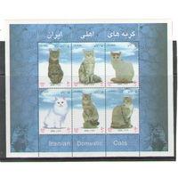 Иран Кошки 2004 год чистый полный лист из 6-ти марок