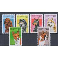 [341] Бенин 1997.Фауна.Собаки.