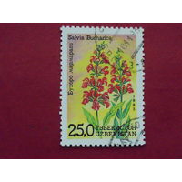 Узбекистан 1993г. Флора.
