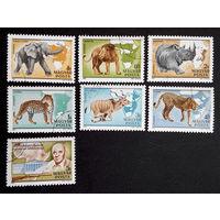 Венгрия 1981 г. Животные Африки. Фауна. 100-летие биолога Калмана Киттенбергера, полная серия из 7 марок #0239-Ф1P54