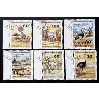 Нигер 1981 г. Дикие животные. Фауна, полная серия из 6 марок #0214-Ф1P49