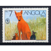 1991 Ангола. Собака