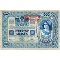 Австрия, 1000 крон обр. 1902 г. (1919 г.)