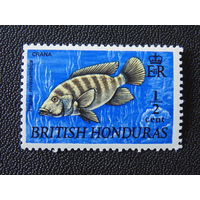 Британский Гондурас. 1969 г. Мозамбикская Тилапия. Фауна.