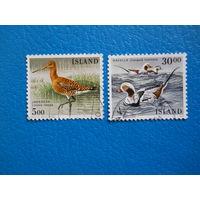 Исландия. 1988 г. Мi-692-693. Птицы.
