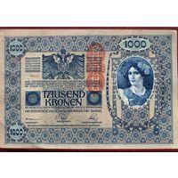 Австрия. 1000 крон (образца 1902 года, выпуск 1919, P59)