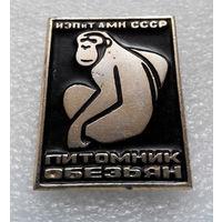Значок. Питомник обезьян ИЭПиТ АМН СССР U-P04 #0003