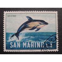 Сан-Марино 1966 дельфин