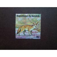 Бурунди 1975 г.Миниатюрная лисица - Фенек.