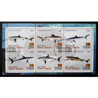 Восточный Тимор 2001 г. Акулы. Рыбы. Фауна, полная серия + Блок #0083-Ф1