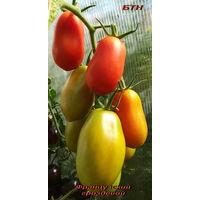 Семена томата Французский гроздевой