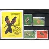 Фауна Мадагаскар 1987 год серия из 1 блока и 4 марок