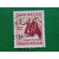 ЮАР 1954г.  Фауна.