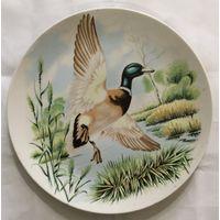Тарелка Утка (птицы, охота). МФЗ