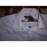 Рубашки на рост 170-176 по отличным ценам