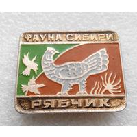 Рябчик. Фауна Сибири. Животные. Птицы #0439-UP14
