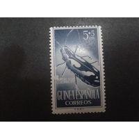 Гвинея 1953 колония Испании жук