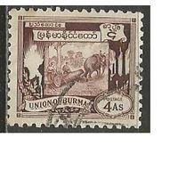 Бирма. Рабочие слоны. 1949г. Mi#111.