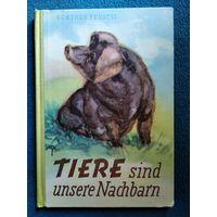 Tiere sind unsere Nachbarn // Книга на немецком языке