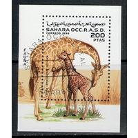 Сахара /1996/ Фауна / Жирафы / Мини блок