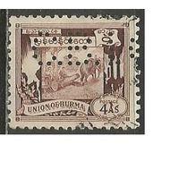 Бирма. Рабочие слоны. 1949г. Mi#111. Марка с перфином.