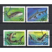 Фауна Морские животные Танзания 1999 год 4 марки