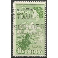 Бермуды. Королева Елизавета II. Лилии. 1953г. Mi#132.