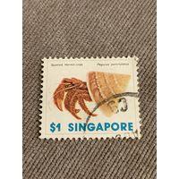 Сингапур. Краб. Pagurus punctulatus