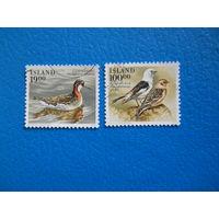 Исландия. 1989 г. Мi-698-699. Птицы.