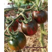 Семена томата Фиолетовая Фея(Purple Fairy )