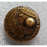 Значок. Чемпионат мира по волейболу. Минск 1978 #0109