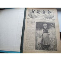 Журнал НИВА. Иллюстрированный журнал. Подшивка журнала Нива за 1901г.