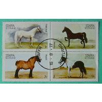 Шотландия. Лошади. ( 4 марки ) 1977 года.