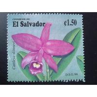 Сальвадор 1999 орхидея