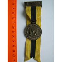 Сувенирная медаль (9).