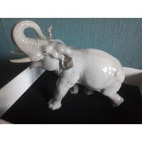 Фарфор. Слон серый. ЛФЗ. 1960-е годы. Редкость.Большой.