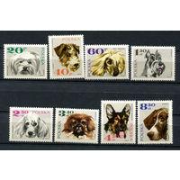 Польша - 1969 - Собаки  - [Mi. 1898-1905] - полная серия - 8 марок. MNH.