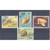[13] Сенегал 1988.Фауна.Моллюски.  Гашеная серия.