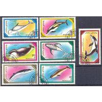 Монголия фауна дельфин