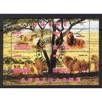 Конго - CTO - львы - животные - Фауна - Частный выпуск - зубчатый - 2012