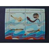 Непал 1993г. Морская фауна.