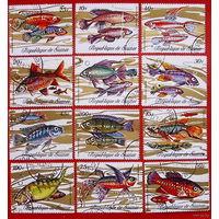 Гвинея 1971. Рыбы. Полная серия.