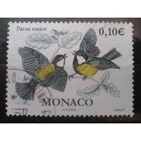 Монако 2002 Птицы