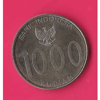 13-40 Индонезия, 1000 рупий 2010 г.