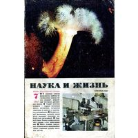 """Журнал """"Наука и жизнь"""" (1982, #7)"""