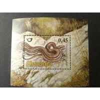 Словения 2008г. Змея блок