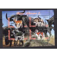 Чад - CTO - животные - Африканские - Фауна - Частный выпуск - зубчатый - 2012