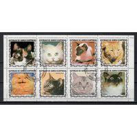 Экваториальная Гвинея/1978/Кошки/Животные/Фауна/СТО/ Мини-лист/