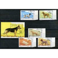 Сахара 1995г. собаки. 5м. 1 блок